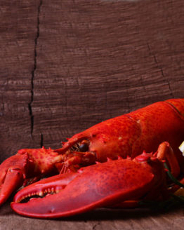 atlantic-lobster-supplier-in-bc